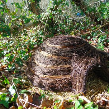 Hedgehog home at the Tranquil Otter
