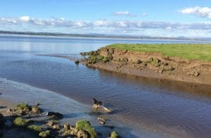 Solway Coast - Near Gretna - with Leah