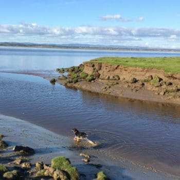 Solway Coast - Near Gretna - with Leah
