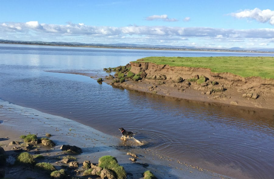 Solway Coast an area of outstanding natural beauty The Tranquil Otter