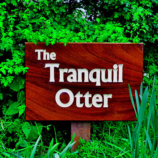 Find Us The Tranquil Otter