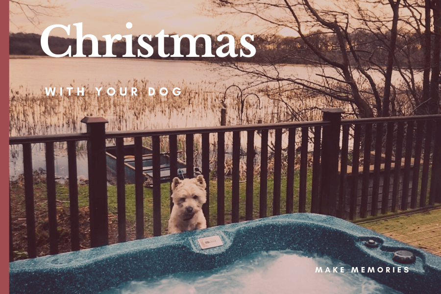 Dog Friendly Christmas Hot tub Holiday