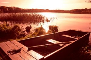 Boat_The_Tranquil_Otter-e14437798577511