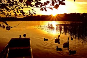 The_Lough_at_Tranquil_Otter-1-e14437799266201